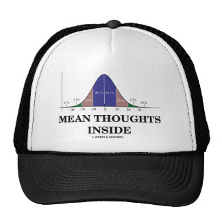 Mean Thoughts Inside (Statistics Humor) Mesh Hat