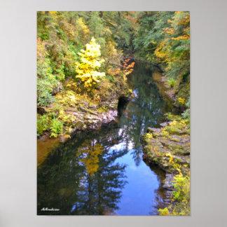 Meandering Autumn Print