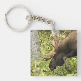 Meandering Moose Keychain