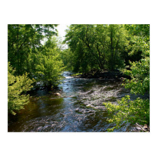 Meandering Pushaw Stream, West Old Town, Maine Postcard