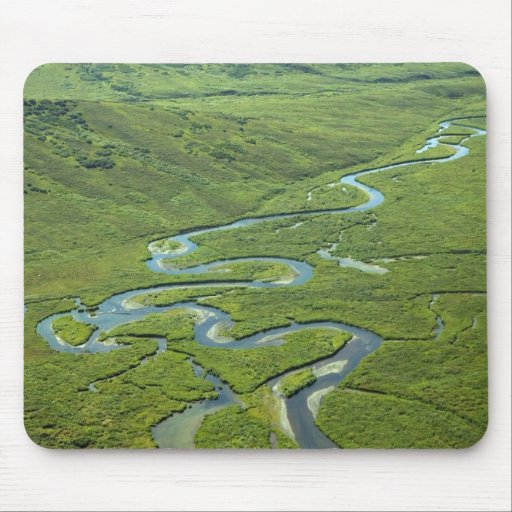 Meandering River Mouse Pads