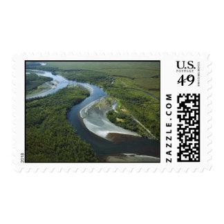 Meandering River Stamp