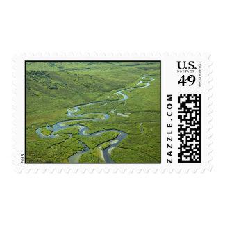 Meandering River Stamps