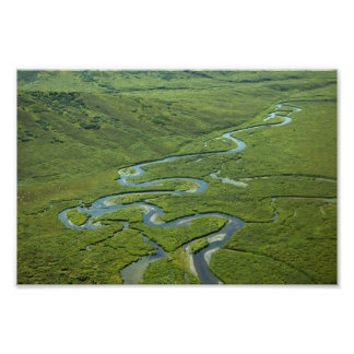 Meandering River Posters