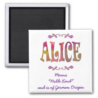 Meaning of Alice Magnet