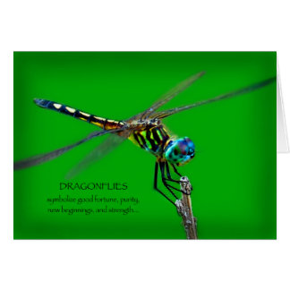 Meaning Of Dragonflies Greeting Card