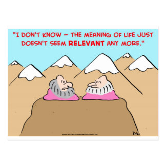 MEANING OF LIFE DOESN'T SEEM RELEVANT - GURUS POSTCARD