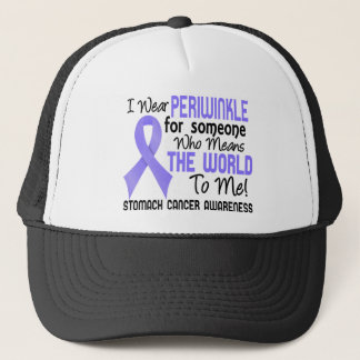 Means The World To Me 2 Stomach Cancer Trucker Hat