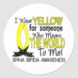 Means World To Me 1 Spina Bifida Stickers