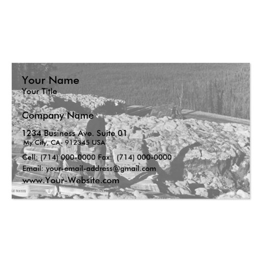 Measures to Retart Melting Permafrost Double-Sided Standard Business Cards (Pack Of 100)