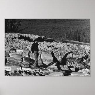 Measures to Retart Melting Permafrost Poster
