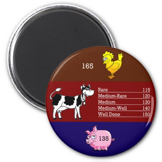 Meat temperature magnet