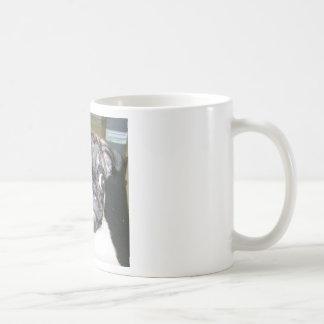 MEATBALLS COFFEE MUG