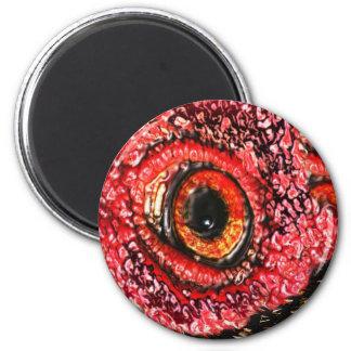 MeatEye Fridge Magnets