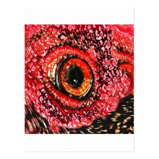 MeatEye Postcard