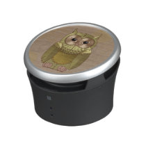 Mechanical Steampunk Owl in Faux Metallic Colors Speaker