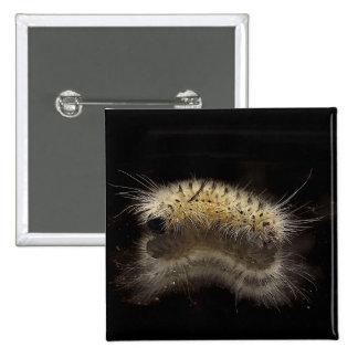 Mechón Caterpillar de la nuez dura Pin Cuadrado