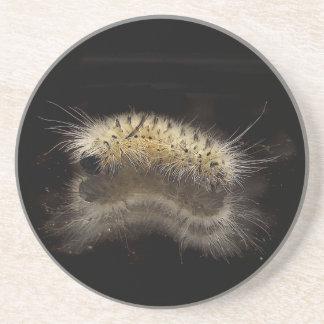 Mechón Caterpillar de la nuez dura Posavasos Cerveza