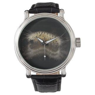Mechón Caterpillar de la nuez dura Reloj