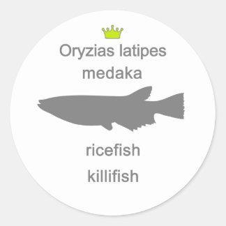 medaka g5 classic round sticker