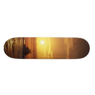 MeddockPhoto_Skateboard_Art Patines