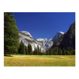 Media bóveda en el parque nacional de Yosemite Tarjetas Postales