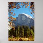 Media bóveda en otoño - parque nacional de Yosemit Poster