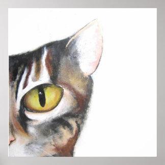 Media cara del gato posters