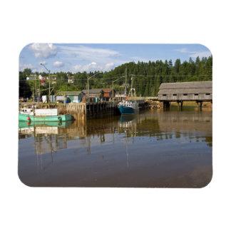Mediados de marea en la bahía de Fundy en St Marti Imanes Flexibles