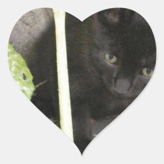 Medianoche como gatito pegatinas corazon personalizadas