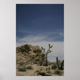 Medianoche en el Mojave Póster