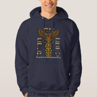 Medical Caduceus Universal View Notes Important Hooded Pullover