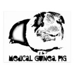 Medical Guinea Pig Post Card