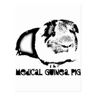Medical Guinea Pig Postcard