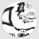 Medical Guinea Pig Round Stickers
