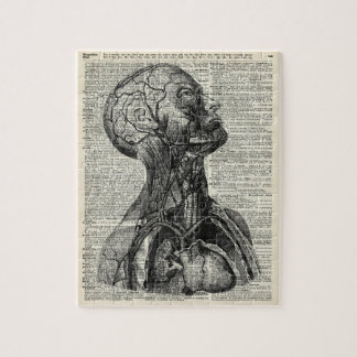 Medical Human Anatomy Jigsaw Puzzle