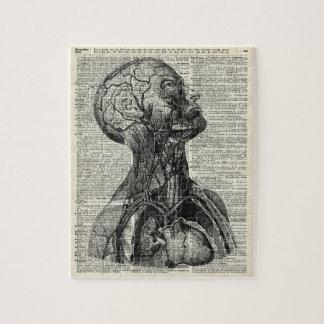 Medical Human Anatomy Jigsaw Puzzle