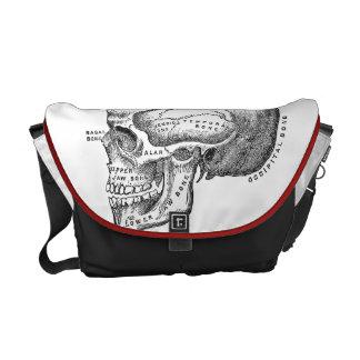 Medical Skull Bag - Anatomy Bag Commuter Bags