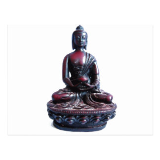 Medicina Buda Postal