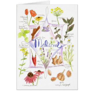 Medicinal Herbs Echinacea Poppy Garlic Notecard Stationery Note Card