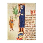 Medicinal Plants Gallery Wrap Canvas