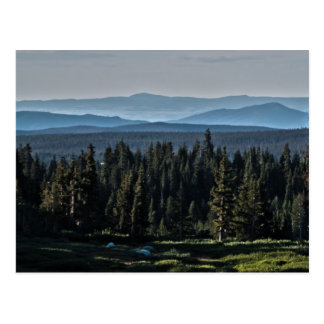 Medicine Bow National Forest Postcard