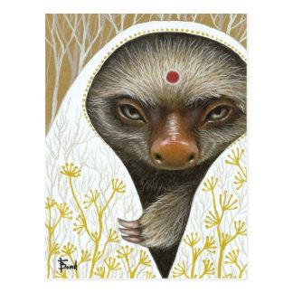 Medicine Sloth Postcard