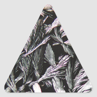 Medicine under a Microscope, Nystatin Triangle Sticker
