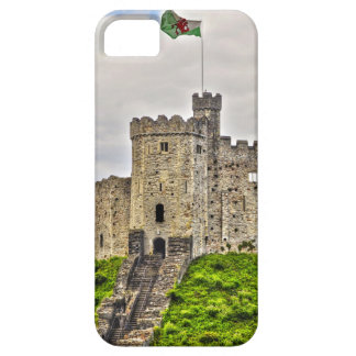 Medieval Cardiff Castle Window Cardiff Wales iPhone 5 Cover