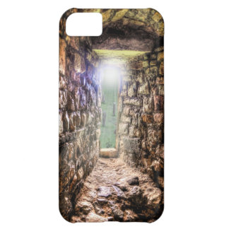 Medieval Cardiff Castle Window Welsh History Wales Cover For iPhone 5C