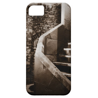 Medieval Castle Stairs of Cardiff Wales Cover For iPhone 5/5S