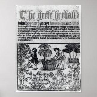 Medieval Herb Garden Poster