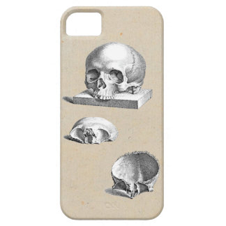Medieval Human Skull Cheselden Drawing iPhone SE/5/5s Case