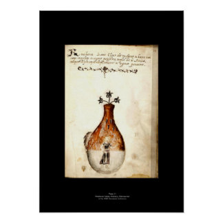Medieval Italian Alchemy Poster Plate 11